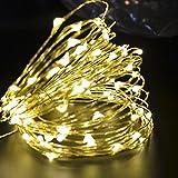 Ambielly cadena de luz LED de 10 metros de Navidad, vacaciones de Navidad decorativo 100 LEDs azules claras de Navidad luces de cadena de cobre para la Navidad de la boda de Halloween de hadas luces de la secuencia con interfaz USB (Blanco cálido)