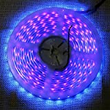FFNW Waterproof LED UV Light Strip 5M/16.4Ft 3528 SMD 395nm-405nm Blacklights Lights Strip Fixtures Outdoor Indoor DC 12V Purple/Ultraviolet LED Lighting