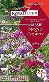 Royalfleur PFRF08695 Graines de Mélange de Fleurs mon Massif Magic Cosmos 25 m²