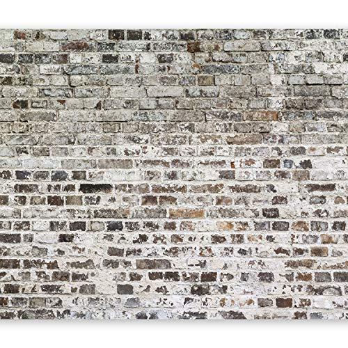 murando - Fototapete 400x280 cm - Vlies Tapete - Moderne Wanddeko - Design Tapete - Wandtapete - Wand Dekoration - Ziegel Mauer f-A-0411-a-b