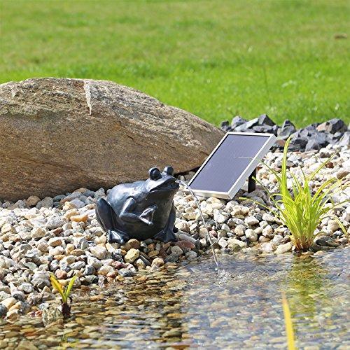 CLGarden Solar Wasserspeier Frosch NSP9 Springbrunnen für Teich mit Pumpe