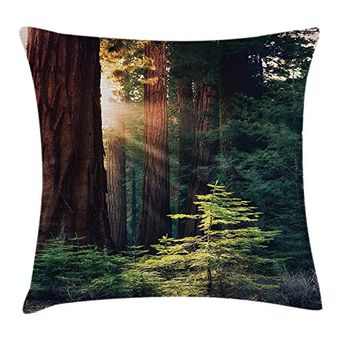 National Parks Home Decor Throw Pillow Cushion Cover by, Morning Sunlight in Wilderness Yosemite Sierra Nevada Nature Art, Decorative Square Accent Pillow Case,Green Brown 20x20in -