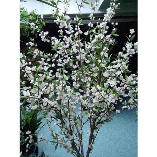 Kirschblütenbaum creme mit 702 Blättern und 756 Blüten, 110 cm – Kunstbaum