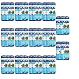 AllNutrition BCAA Xtra Drink 250ml Dose Zero Sugar Aminosäuren SCHWARZE JOHANNISBEERE BCAA-DRINK (42)