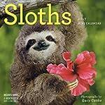 Sloths Mini Wall Calendar 2017