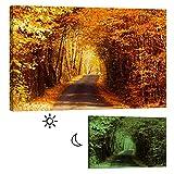 Imágenes startoshop, pilas Lienzo imágenes, en el bosque–cuadro de clase, natural, 80cm x 120cm