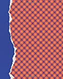 Orange and Blue Journal: (8 x 10 Large)(Lined) Blank School Colors Notebook College High School Student Organizer Planner Alumni Booster Club Planner ... Diary Unique Plaid Cover Torn Paper Binding