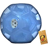 Foodie Puppies Aggressive Chewers Interactive Squeak Crystal Blue Diamond Ball Toy for Puppies & Dogs (Large)