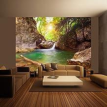 murando - Fotomural 400x309 cm - Papel tejido-no tejido - Papel pintado - naturaleza - 100403-153