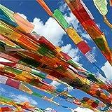 Colorful Kong Kim Mantra Gebetsfahnen Senki Wind Pferd Flagge 5Meter 20pieces/String Buddhistische Zeremonie Flagge Tibet Lung TA Banner