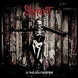 5:the Gray Chapter (Dlcd) [Vinyl LP]
