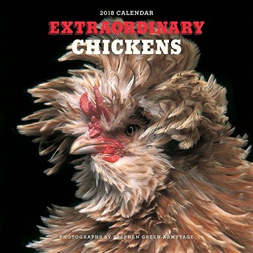Extraordinary Chickens 2018 Calendar