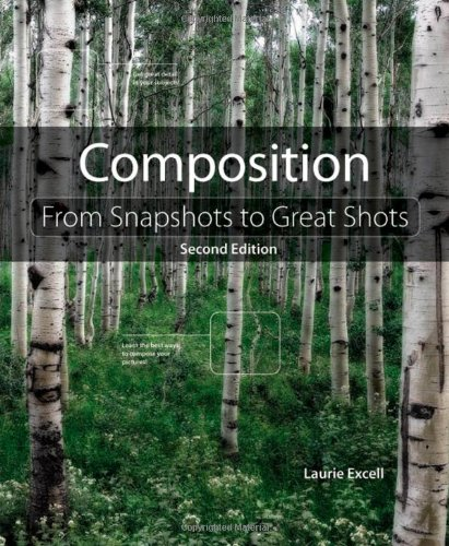 Composition (From Snapshots to Great Shots)