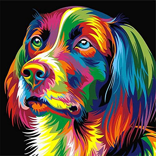 ing, Crystal Rhinestone Diamond Embroidery Paintings Pictures Arts Craft for Home Wall Decor Colorful Dog 11.8 X 11.8 Inch ()