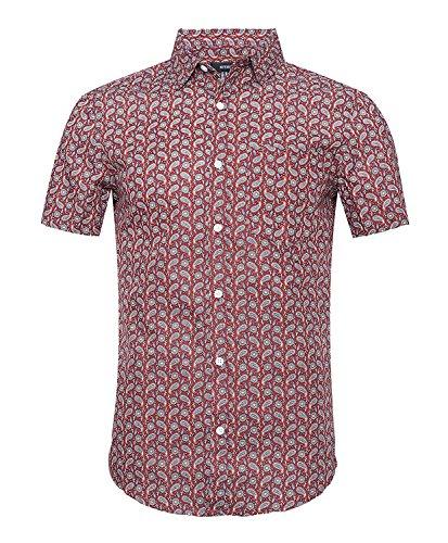 Nutexrol Herren Kurzarm Hemd mit Ananas Obst Aufdruck für Party Urlaub B-Rot XXX-Large (Herren-unterwäsche Obst)
