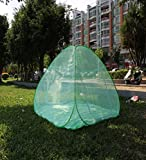 LIQICAI Moskitonetz Reise Starker elastischer Stahldraht Camping Schlafausrüstung, Praktisch 2-türig 4 Farbe Optional (Farbe : Green, größe : 2.00x2.20x1.55m)