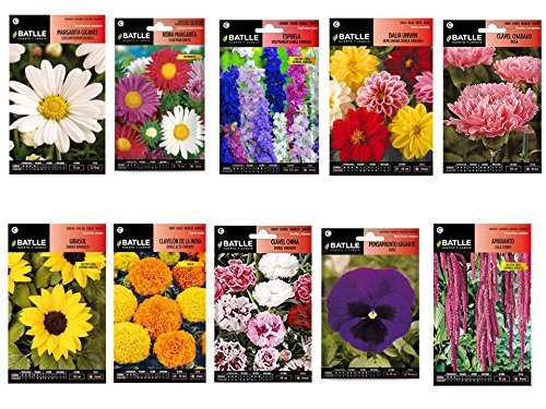 Semillas flores 10 sobres variados (Amaranto, Clavel Rosa, Pensamiento azul, Clavel China, Dalia doble, Espuela, Margarita gigante, Tagete, Girasol enano, Reina Margarita, Amaranto)