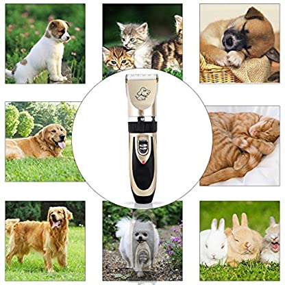 Sminiker Pet Grooming Clippers Low Noise Dog Clippers Cordless Pet Clippers Rechargeable Pet Hair Shaver Professional… 2