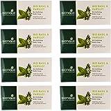 Biotique Bio Basil and Parsley Revitalizing Body Soap (150 gm), 8