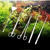 HUMEI Hu M 5 pezzi forbici in acciaio inox, pinzette, clip e strumenti di svasatura, albero pianta erba acquario paesaggio Trim Tools, dimensione: S