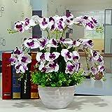 GBHNJ Artificial Flowers GBHNJ False Rot Weiß Butterfly Orchid Deko Vase Künstliche Fe