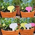 Demiawaking 100Pcs 6 x10cm Kunststoff Garten Pflanzenstecker Schlagwörter Schild von Demiawaking bei Du und dein Garten