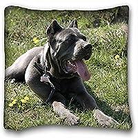 Decorativo Quadrato Throw Pillow Case animali cane