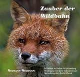 Im Zauber der Wildbahn: Wildtiere in Baden-Württemberg