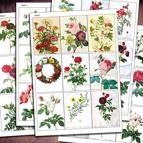 traditional-victorian-botanical-floral-arts-and-craft-up-cycling-decal-sticker-sheets