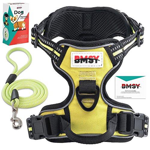 BMSY Hunde Geschirr und Leine, verstellbar, mit Geschirr mit Griff für alle breeds-, rutschfest, 100%-Sicherheit, für alle, die die beste dogs- Hunde-Weste, mit einem Effekt