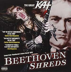 Beethoven Shreds [Import anglais]
