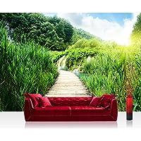 Carta da parati fotografica 350x 245cm Premium Plus carta da