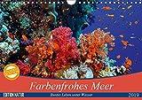 Farbenfrohes Meer (Wandkalender 2019 DIN A4 quer): Buntes Leben unter Wasser (Monatskalender, 14 Seiten ) (CALVENDO Natur)
