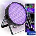 beamz FlatPAR 186 x 10mm Ultraviolet UV LEDs DMX Mobile DJ Bar Lighting Light