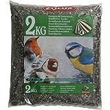 Graines de tournesol sac de 2 kg pour oiseaux de la nature/ZOLUX