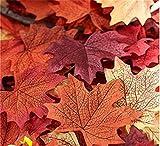 Yinew 120 Stück künstliche Herbst-Ahornblätter Ahorn Laub Blätter Multicolor Tabellen-Streuung für Herbst Hochzeiten,Herbst-Parties