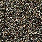 AQUARISTIKWELT24 15 Kg Edelkies feine Körnung 2-3mm Premium Qualität von Orbit Bodengrund Aquarium Kies