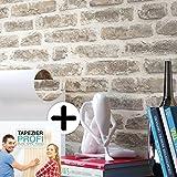 Steintapete Vlies Grau Creme | schöne edle Tapete im Steinmauer Design | moderne 3D Optik für Wohnzimmer, Schlafzimmer oder Küche inklusive Newroom-Tapezier-Profibroschüre, mit Tipps für perfekteWände