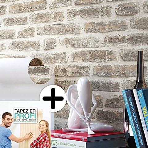Steintapete Vliestapete Grau Creme , schöne edle Tapete im Steinoptik , moderne 3D Optik für Wohnzimmer, Schlafzimmer oder Küche inklusive Newroom Tapezier Profibroschüre, mit Tipps für