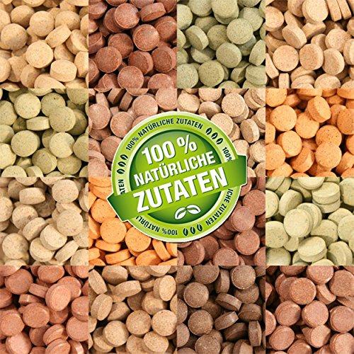 Teichpoint 1000 ml (700g) Premium TOP Futtertabletten Opti-Mix 17, Tablettenfutter Mix für Aquarium Zierfische Tabletten -