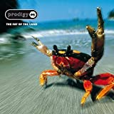 The Fat of the Land [Explicit]