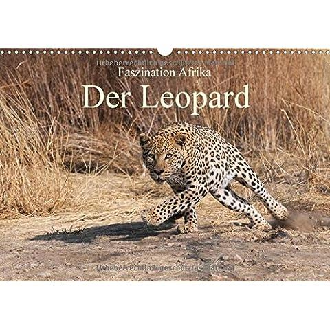 Faszination Afrika: Der Leopard (Wandkalender 2017 DIN A3 quer): Der Leopard, die elegante und kraftvollen (Leopard Elegante)