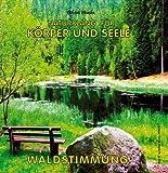Waldstimmung (ohne Musik) - Naturklänge für Körper und Seele - Naturgeräusche für Entspannung Meditation und Wellness