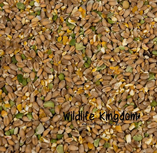 wildlife-kingdom-hi-energy-premium-mixed-poultry-corn-mix-oyster-peas-chicken-hen-feed-duck-geese-10