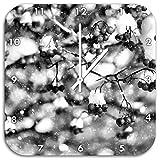 Monocrome, Vogelbeeren mit Schnee bedeckt, Wanduhr Durchmesser 48cm mit weißen spitzen Zeigern und Ziffernblatt, Dekoartikel, Designuhr, Aluverbund sehr schön für Wohnzimmer, Kinderzimmer, Arbeitszimmer
