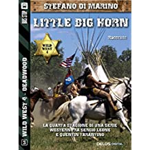 Little Big Horn (Wild West)