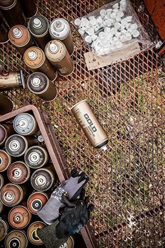 Montana Cans 285394 Spray Dose Gold, Gld400, 8020, 400 ml, Sahara Beige