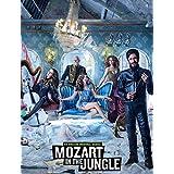 Mozart in the Jungle US Drama Customized 14x18 inch Silk Print Poster Seda Cartel/WallPaper Great Gift