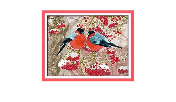Everlasting Love Weihnachtsstrumpf /Ökologische Baumwolle Stickpackungen Gez/ählt Stamped 14 11CT neues Jahr Handgemachte Kreuzstich Color : C592 11CT counted product