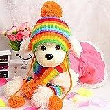 Mütze, Schal und Socken für Hunde, Winterkleidungsset, Strickkleidung in Regenbogenfarben, 3er-Set